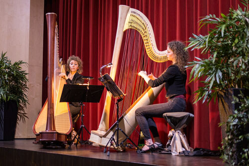 Harfe im Duo